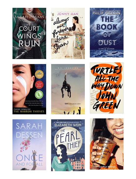 Best Teen Books Of 2017 Princeton Public Library Bibliocommons