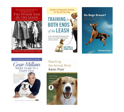cesar millans short guide to a happy dog 98 essential tips and techniques