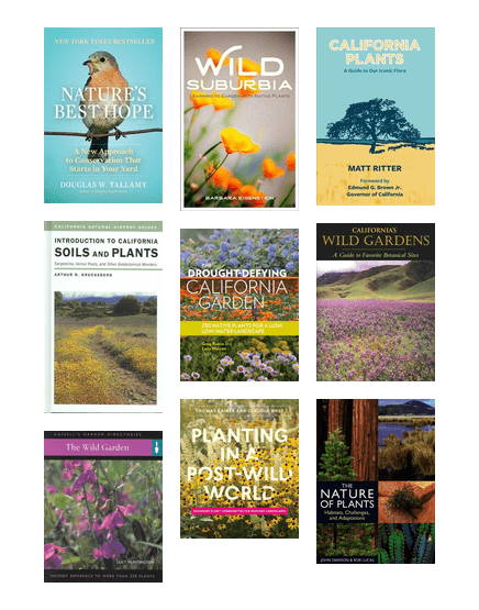 Native Plants Palo Alto City Library Bibliocommons