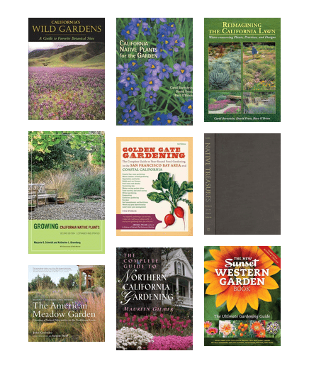 Northern California Gardening   Native Plants, Low Water Gardening And  Natural Landscaping
