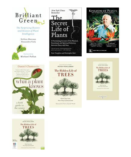 Plant Intelligence Chapel Hill Public Library Bibliocommons