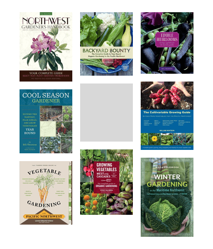Edible Gardening In Seattle